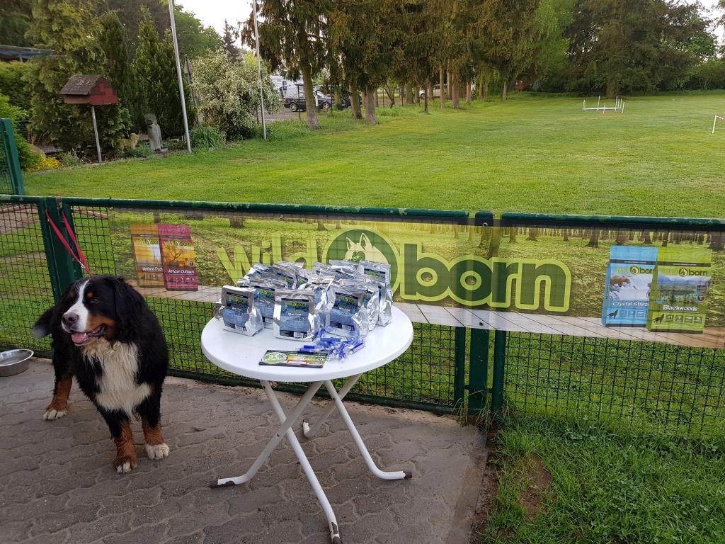 Zughundeprüfung_29_04_2018_016