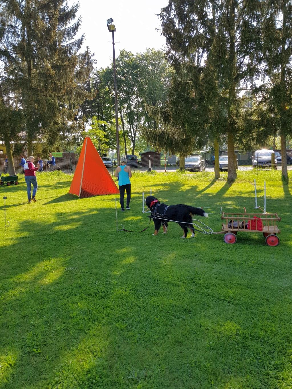 Zughundeprüfung_29_04_2018_095