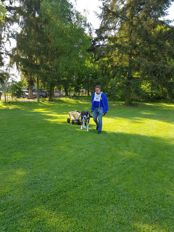 Zughundeprüfung_29_04_2018_105