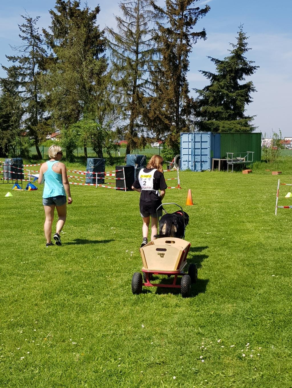 Zughundeprüfung_29_04_2018_139
