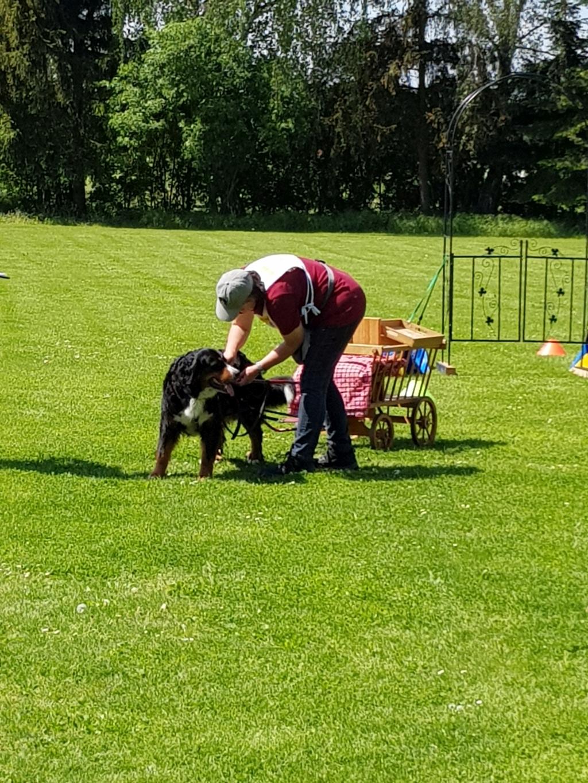 Zughundeprüfung_29_04_2018_147