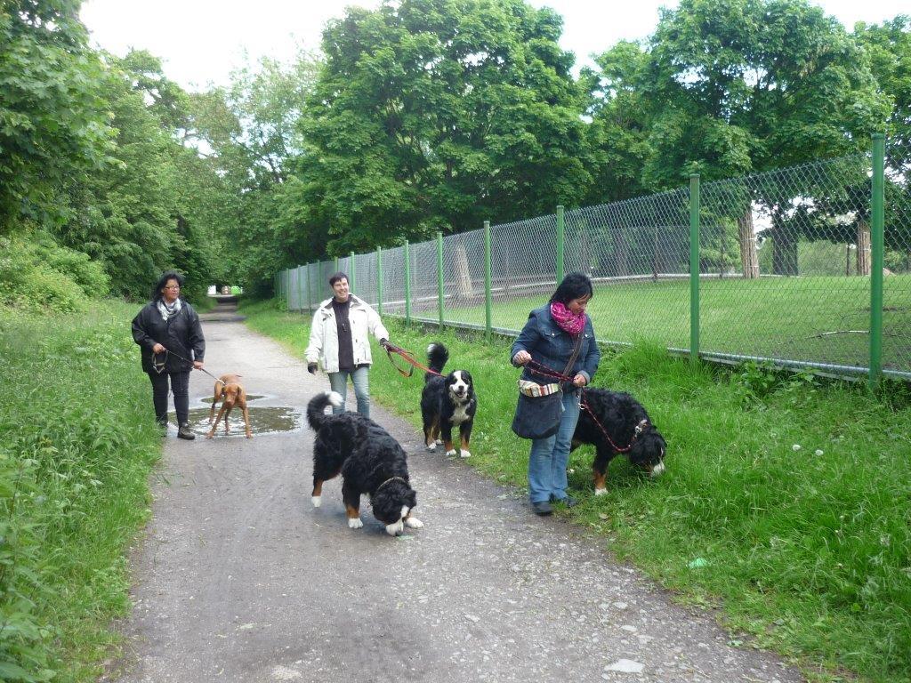 Ausflug Alltagsgruppe Tierpark Forst 05.13 024