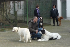 Ausflug Alltagsgruppe Tierpark Forst 05.13 013