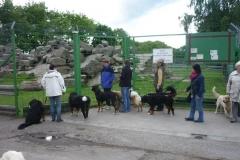 Ausflug Alltagsgruppe Tierpark Forst 05.13 016