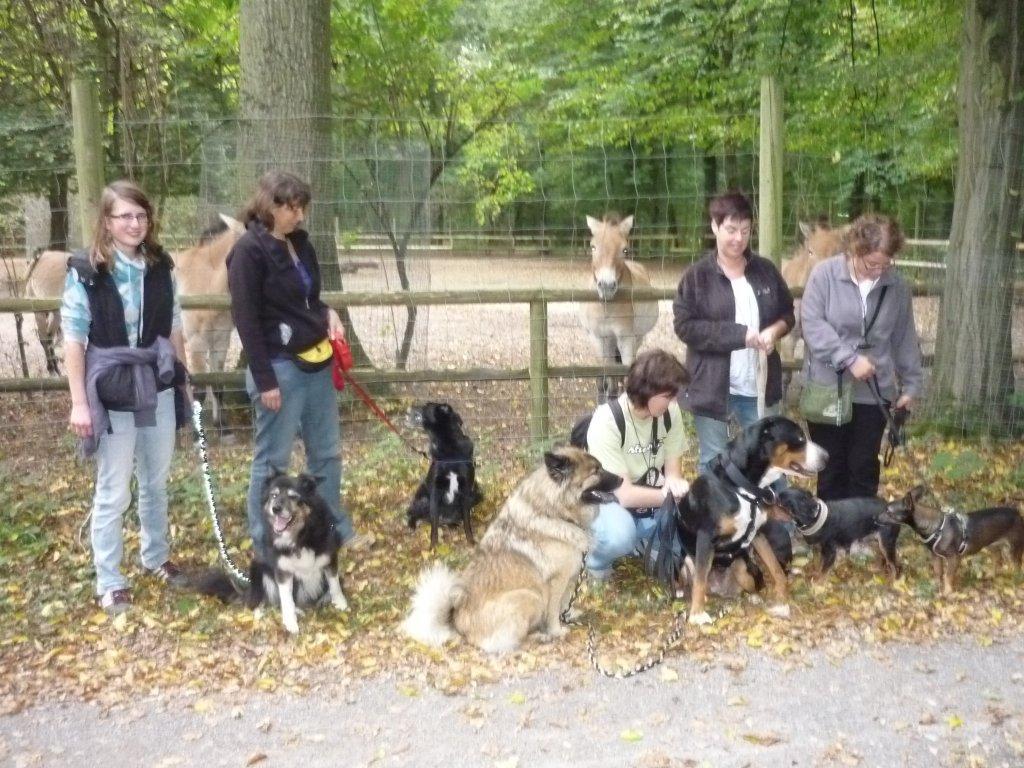 Alltagsgruppe Ausflug Oberwald 010