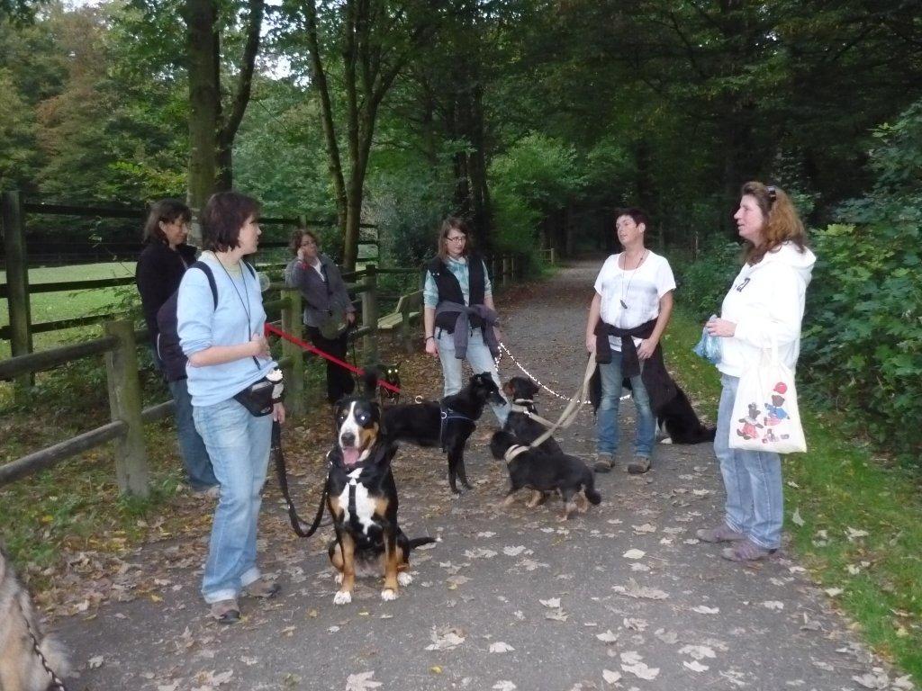 Alltagsgruppe Ausflug Oberwald 021
