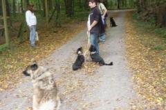 Alltagsgruppe Ausflug Oberwald 012