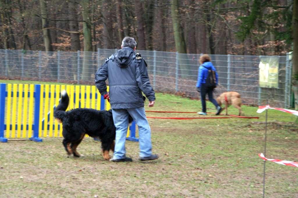 Geschicklichkeitspruefung_VdH_Rodenbach_2015_03_01_009
