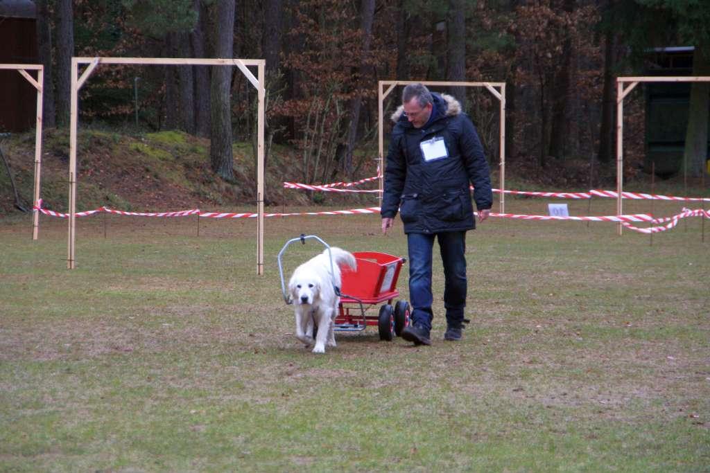 Geschicklichkeitspruefung_VdH_Rodenbach_2015_03_01_048