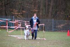 Geschicklichkeitspruefung_VdH_Rodenbach_2015_03_01_018