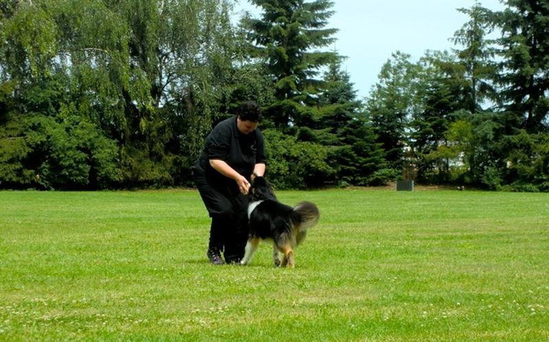 Obedience_Seminar_2012_06