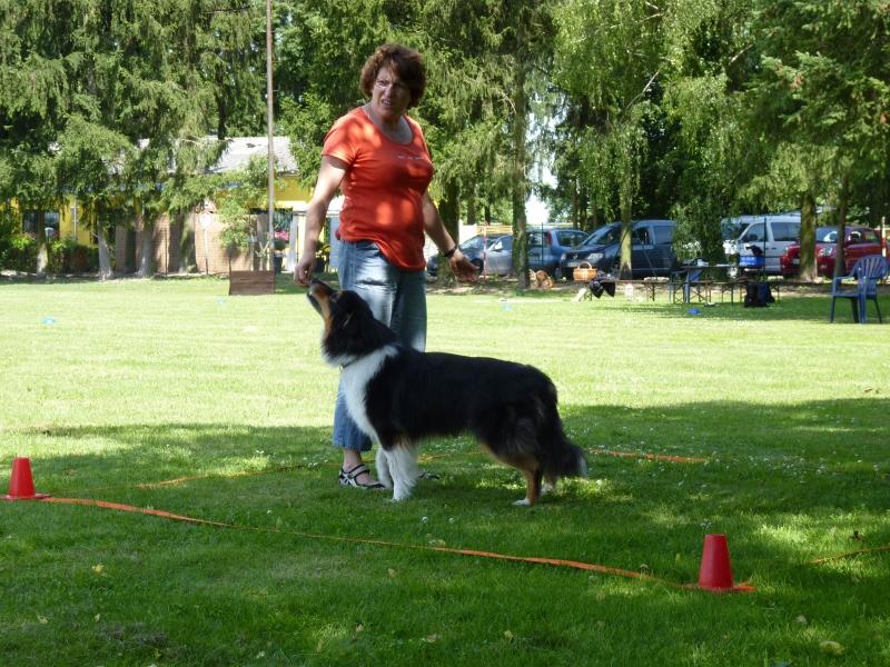 Obedience_Seminar_2012_34