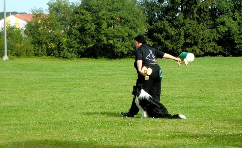 Obedience_Seminar_2012_85