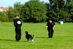 Obedience_Seminar_2012_07