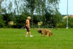 Obedience_Seminar_2012_08
