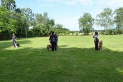 Obedience_Seminar_2012_12