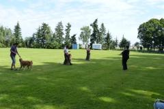 Obedience_Seminar_2012_13