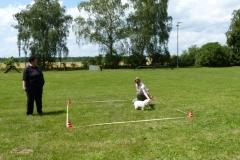 Obedience_Seminar_2012_22