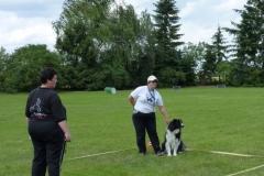 Obedience_Seminar_2012_24