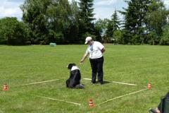 Obedience_Seminar_2012_25