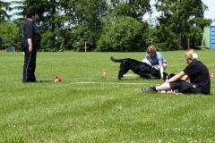 Obedience_Seminar_2012_28