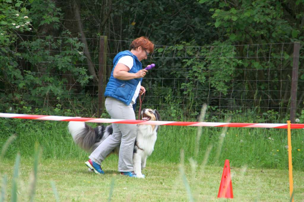 Rally_Obedience_Yvonne_2015_05_17_06