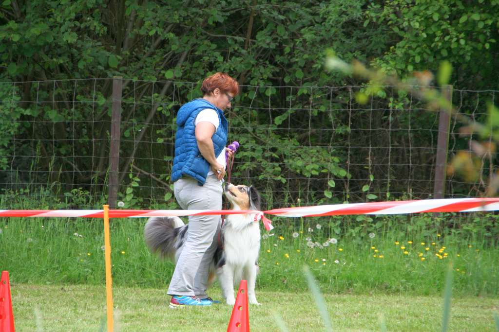 Rally_Obedience_Yvonne_2015_05_17_07