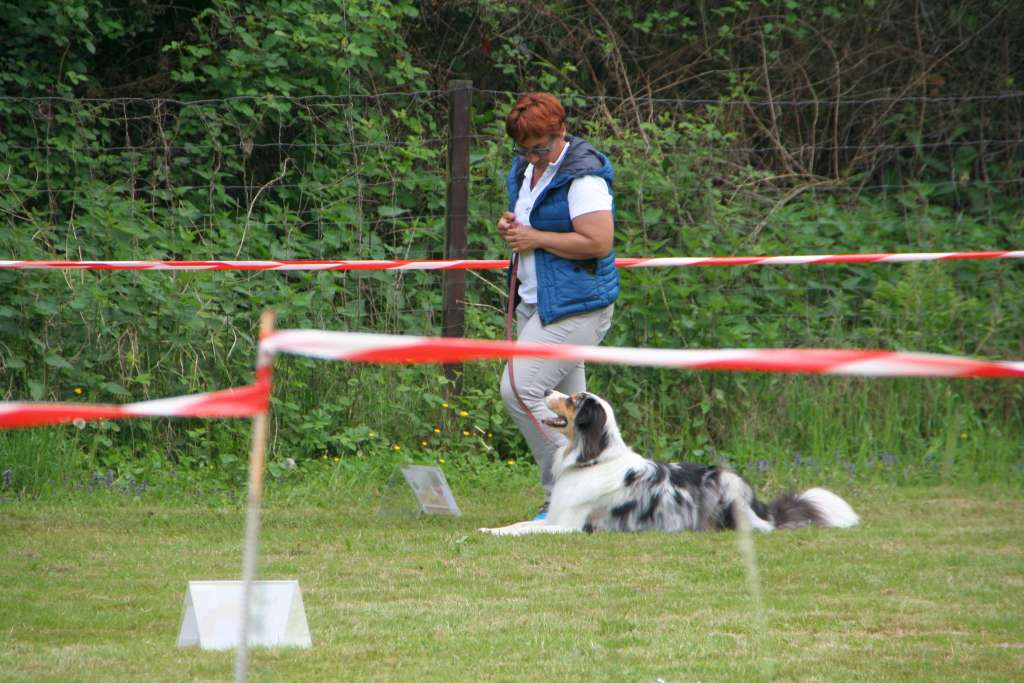 Rally_Obedience_Yvonne_2015_05_17_12