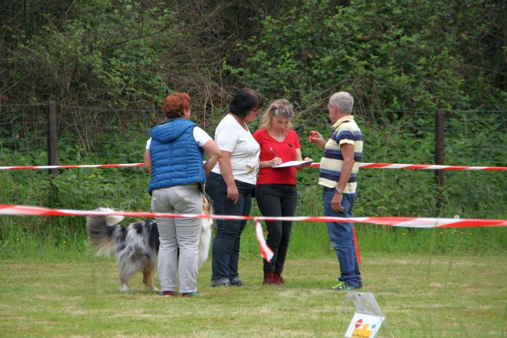 Rally_Obedience_Yvonne_2015_05_17_18