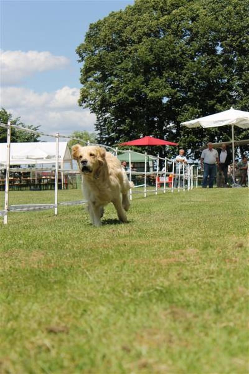 Sommerfest_2012_021