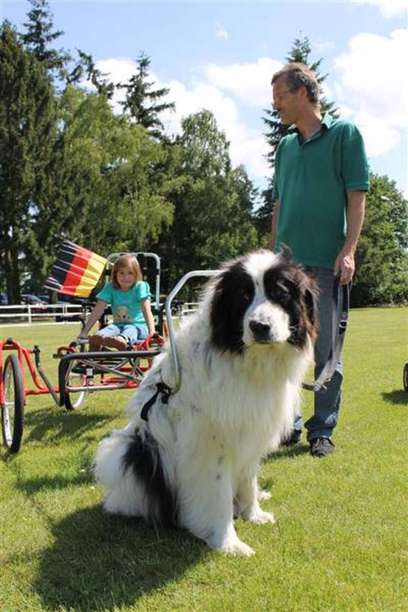 Sommerfest_2012_038