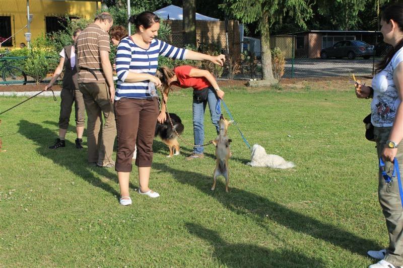 Sommerfest_2012_085