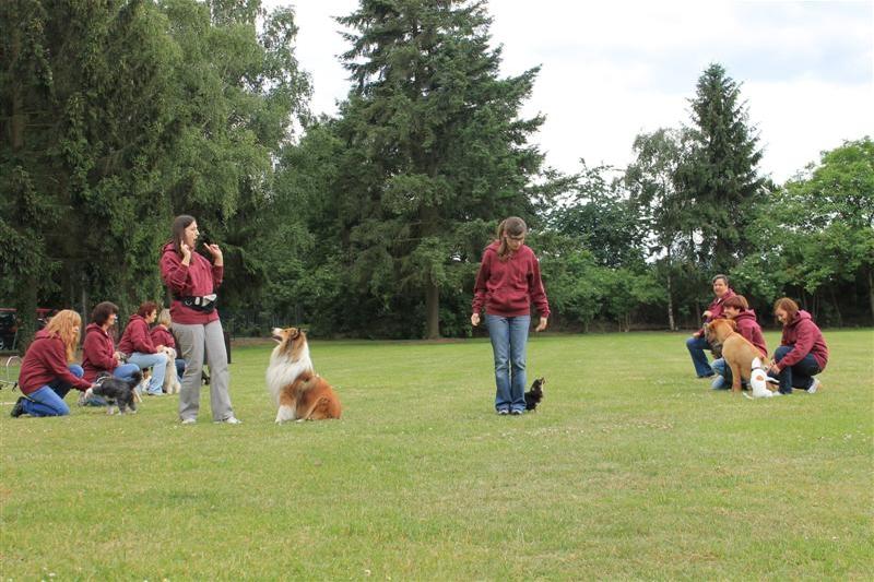 Sommerfest_2012_172