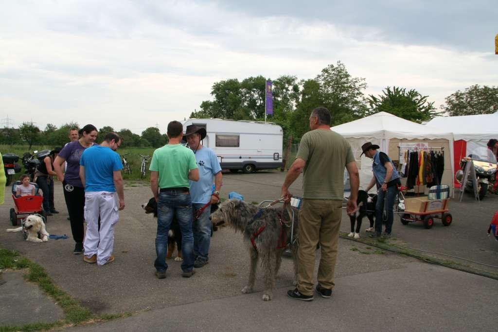 Westrenfest_Diana_2015_05_14_08