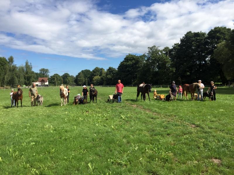 Zughunde_Training_in_Bruchhausen_05_08_2017_054