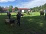 Zughunde trainieren für Premiere