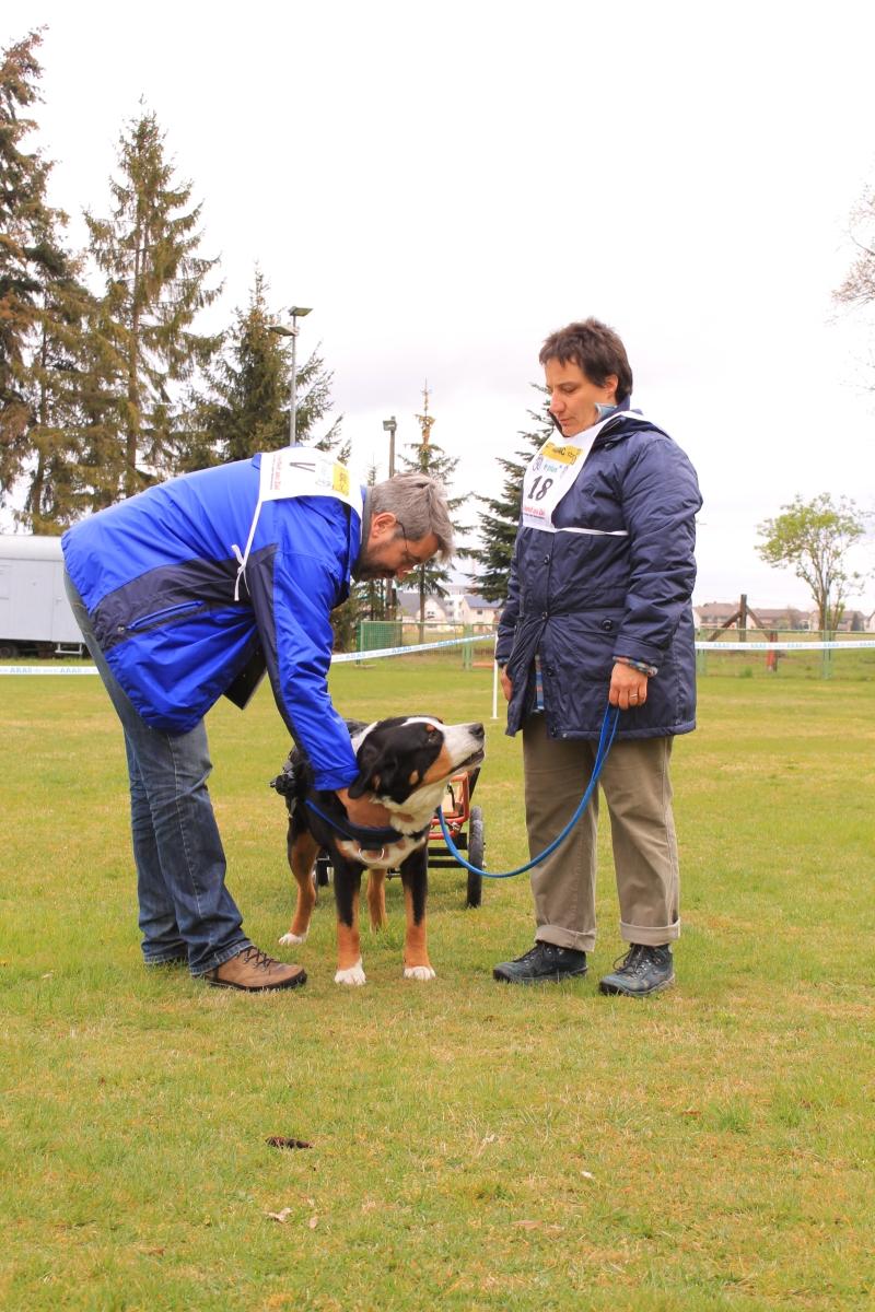 Zughundeprüfung_2012_102