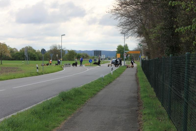 Zughundeprüfung_2012_106