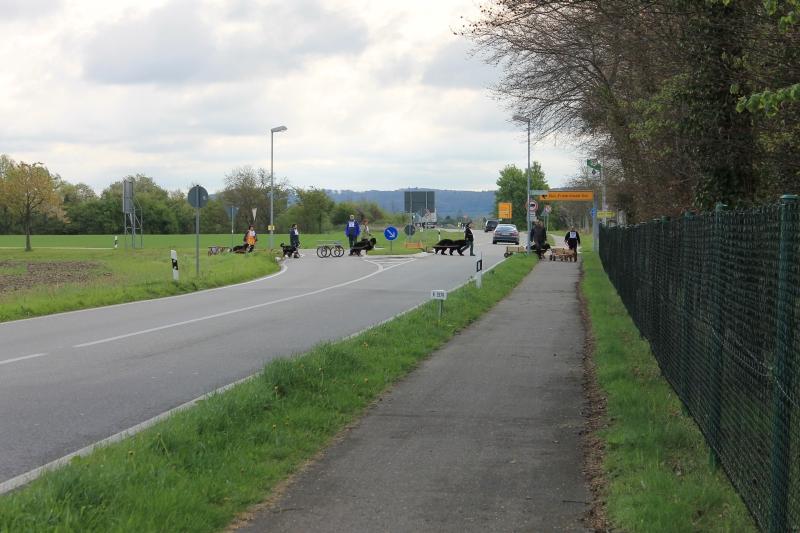 Zughundeprüfung_2012_107