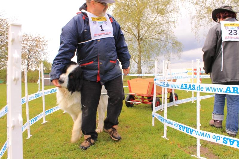Zughundeprüfung_2012_166