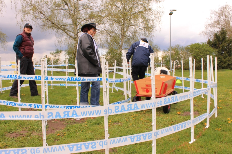 Zughundeprüfung_2012_168