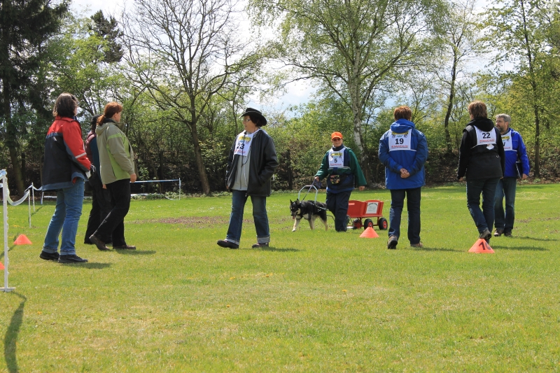 Zughundeprüfung_2012_210