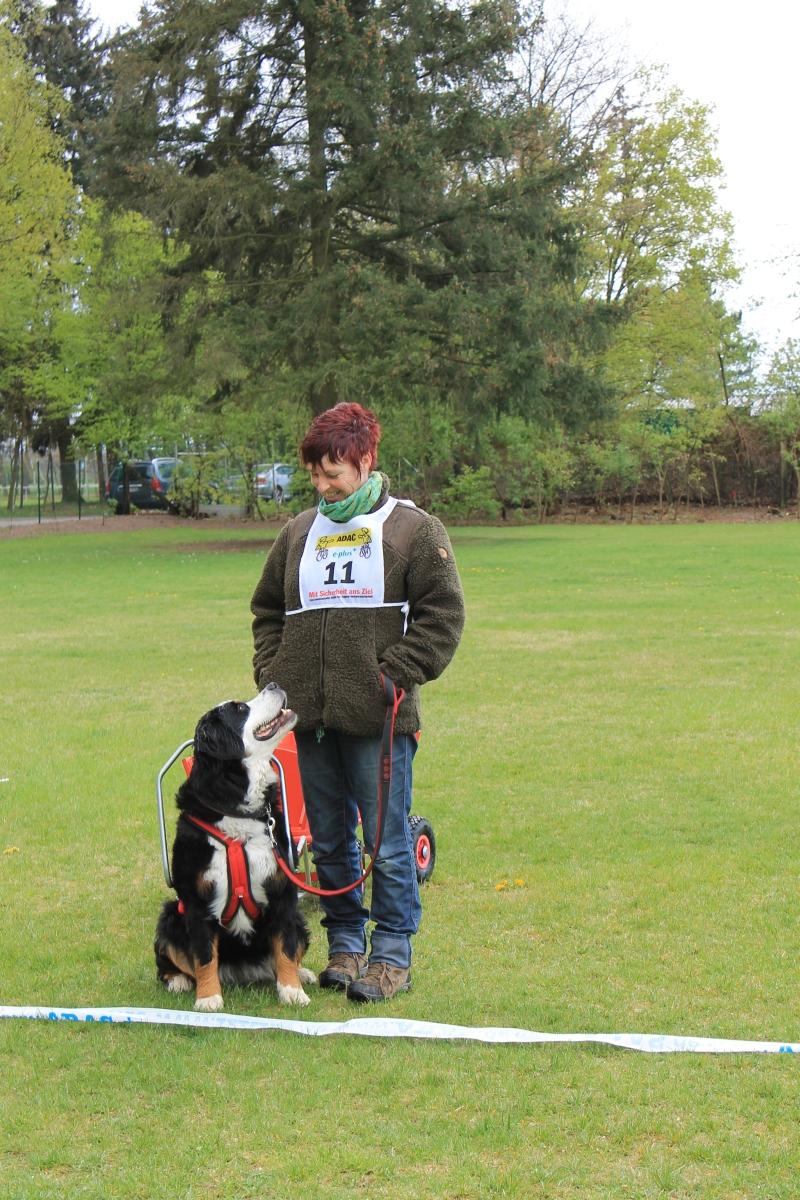 Zughundeprüfung_2012_242
