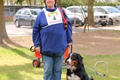 Zughundeprüfung_2012_009