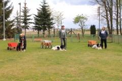 Zughundeprüfung_2012_022