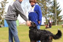 Zughundeprüfung_2012_023