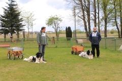 Zughundeprüfung_2012_024