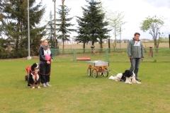 Zughundeprüfung_2012_025
