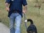 Zughundeseminar August 2011