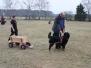 Zughundetraining März 2012